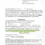 Typenschein-Pirelli-Felge